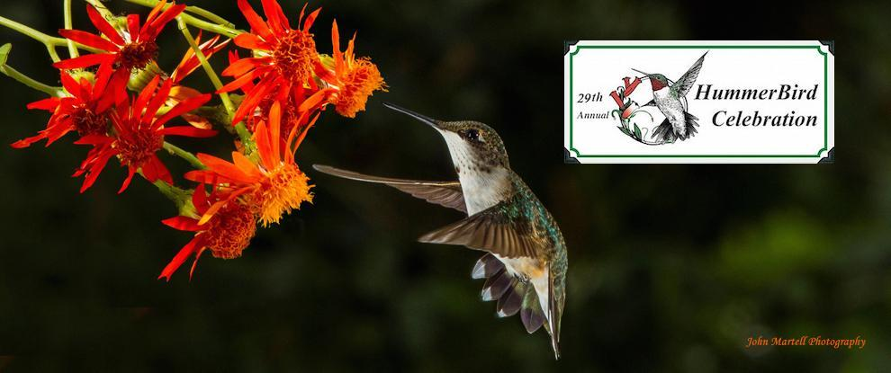Due to Hurrucane Harvey. Hummingbird Celebration has been cancelled.